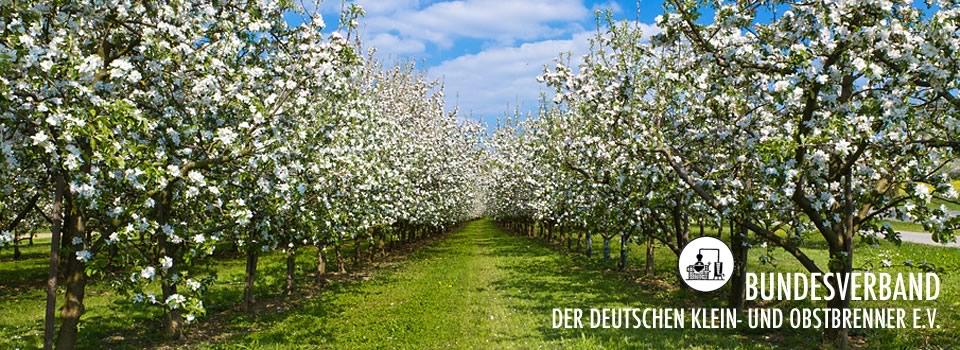 Bundesverband Der Deutschen Kleinbrenner Und Obstbrenner Ev